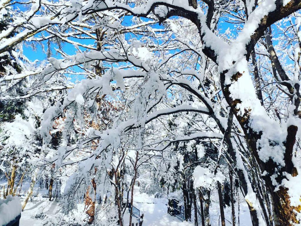 リゾート マンション 山中湖